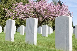 Coveiro - Zeladoria de Cemitérios